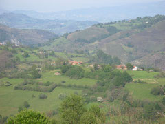 Vio del Pico-Seaza