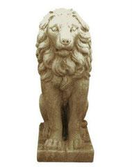 Lion S 44 H 58