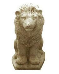 Lion S 43 H 27