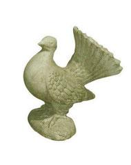 Pigeon S 301 H 28