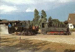Dampflokomotiven Pinus + Taxus