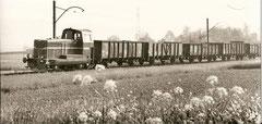 Diesel-Güterzug bei Villmergen mit EM 2/2 101 am 13. 5. 1964