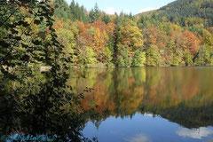 Herbstsee - soooo schön!