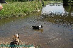 """Kiana & Santos zeigen uns """"ihren"""" Wasserplatz :)"""