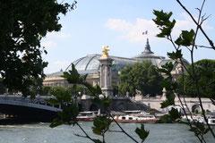 vue sur le Pont Alexandre III et Grand Palais
