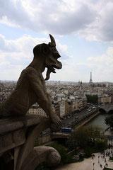 Chimère de Notre Dame