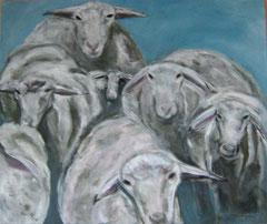 108 x 90 Schafe