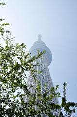 Sky Tree Tower - Tokyo
