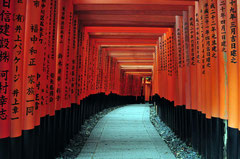 Fushimi Inari Taisha Shrine - Kyoto