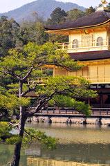 Kinkaku-ji (Golden Pavilion) - Kyoto