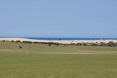 Schneller Übergang vom Farmland zur Küste südlich Geraldton, Westaustralien