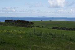 Auf Kangäru Island