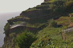 Landwirtschaft auf Madeira
