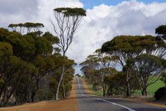 Unendliche Weite in Westaustralien