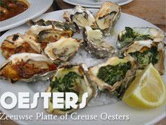 Köstliche Austern aus Yerseke