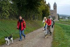 Klosterrunde,T-Dogs,06.10.2013, Foto Nr.14