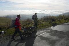 Rhön,Wellness+Wandern,T-Dogs,7.-9.11.2014, Foto Nr.20