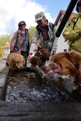 Mantrailing+Wandern Rhön,T-Dogs,30.4.-3.5.2015 Foto Nr.5