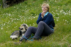 Schweiz-Tessin T-Dogs,Mai 2013, Foto Nr.41