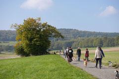 Grünwiesenweiher Welttierschutztag, T-Dogs, 4.10.2014 Foto Nr.9