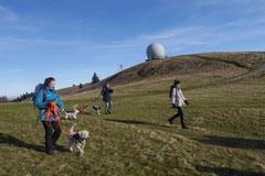 Rhön,Wellness+Wandern,T-Dogs,7.-9.11.2014, Foto Nr.23