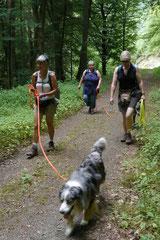 Wispersee, T-Dogs,28.07.2013, Bild Nr.4