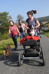Grünwiesenweiher Welttierschutztag, T-Dogs, 4.10.2014 Foto Nr.6