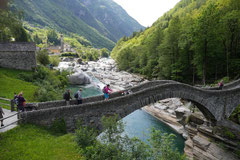 Schweiz-Tessin,T-Dogs,Mai 2014 Foto Nr.1