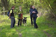 Mantrailing+Wandern Rhön,T-Dogs,30.4.-3.5.2015 Foto Nr.24