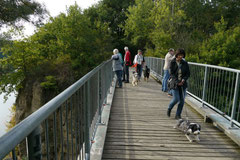 Hundeschulausflug-Sicher auf 4 Pfoten-28.9.13 Foto Nr.2