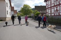 Rhön Frühlingserwachen,T-Dogs,3.+4.5.2014, Foto Nr.14
