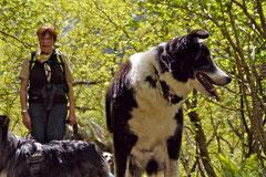 Schweiz-Tessin T-Dogs,Mai 2013, Foto Nr.11
