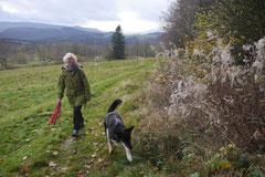 Rhön,Wellness+Wandern,T-Dogs,7.-9.11.2014, Foto Nr.16