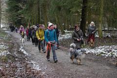 Schnuppertour Gimbacher Hof,T-Dogs,31.1.2015 Foto Nr.1