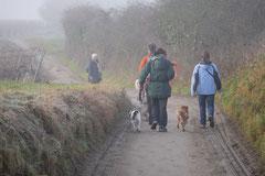 Bensheimer Weinlagen, T-Dogs, 25.1.14, Foto Nr.6