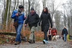 Hofheimer Kapellenberg,T-Dogs,15.12.2013, Foto Nr.5