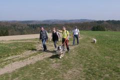 Rheingauen Gebück,T-Dogs,29.+30.3.14, Foto Nr.31