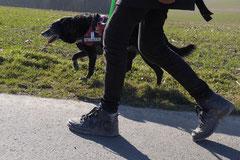 Zur Grube Glück-auf, T-Dogs,9.3.14, Foto Nr.20