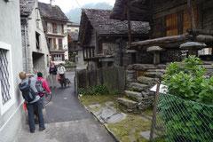 Schweiz-Tessin T-Dogs,Mai 2013, Foto Nr.24