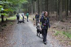 Kapersburg+Winterstein, T-Dogs, 5.10.2014, Foto Nr. 6