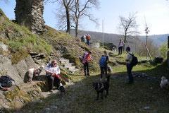 Rheingauen Gebück,T-Dogs,29.+30.3.14, Foto Nr.9