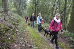 Gimbi,Staufen,Kaisertempel, T-Dogs, 12.10.2014, Foto Nr.8