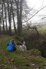 Rhön,Wellness+Wandern,Nov 2013 Foto Nr.:36