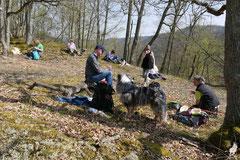 Rheingauen Gebück,T-Dogs,29.+30.3.14, Foto Nr.27