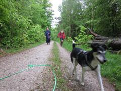 Gipfeltour Taunus, Mai 2012