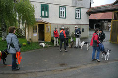 Fischbachtal, T-Dogs 4.5.13, Foto Nr.13