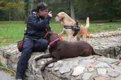 Kapersburg+Winterstein, T-Dogs, 5.10.2014, Foto Nr. 14