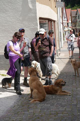 Lindenfels mit Picnic,T-Dogs,15.6.2014,Foto Nr.8
