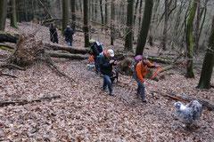 Gimbi,Staufen,Kaisertempel,T-Dogs,2.2.2014, Foto Nr.14