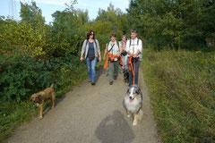 Hundeschulausflug-Sicher auf 4 Pfoten-28.9.13 Foto Nr.6